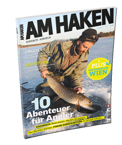 Am-haken2-252x300 in